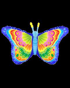 Бабочка кокетка
